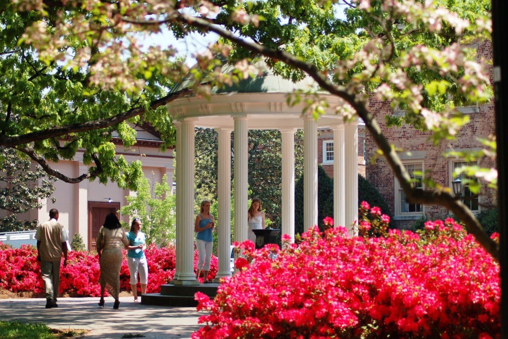 Chapel Hill photo